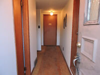 2- Bedroom lower level apt