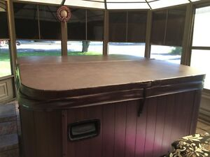 Buy Or Sell A Hot Tub Or Pool In Ottawa Garden Amp Patio