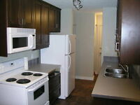 Fully Renovated Condo with Fireplace Behind Oliver Square !!!