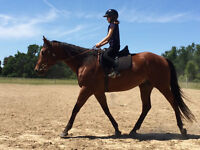 Horseback Riding Birthday Parties!