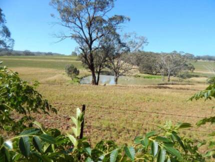 Farm in Sought After Area Coolah Warrumbungle Area Preview