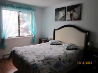 Luxury Furnished Room for rent walking distance to Seneca Colleg