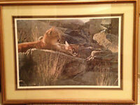 Afternoon Light Young Cougars by Terry Isaac