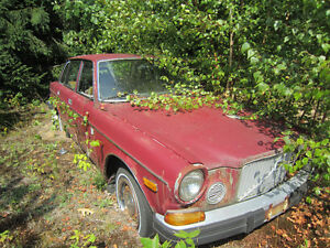 Rare 1974 Volvo 164E Inline Straight Six  Fuel Injection