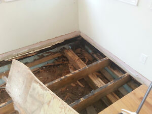 Let's level it unlevel or rotting away we can fix it Kingston Kingston Area image 2