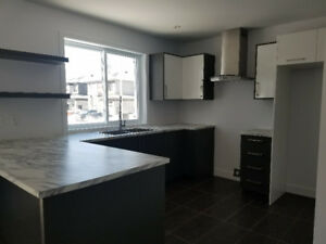 new modern 3 bedroom 2 storey house for rent  available june 1st