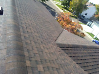 Is it time for a new roof? Or a repair?