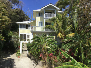 Studio apt. Available West Bay  Roatan