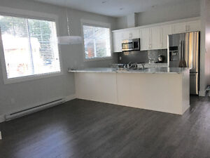 Brand New 3 Br Condo in North Nanaimo