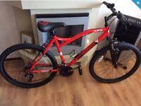 Men's muddyfox 26 inch mountain bike