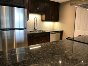 FOR LEASE:  Fabulous 2 bedroom  downtown condo.