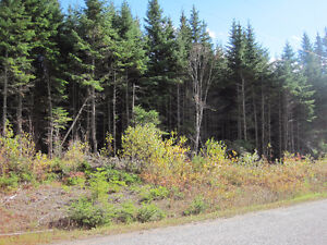 Lot 5A or 5B Brawley Rd Damascus; each are 2 acre lots