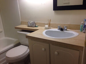 One Bedroom Apartment All inclusive Starting January 1st Kingston Kingston Area image 7