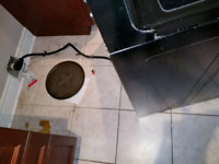 Residential Cleaning Service - PET FRIENDLY