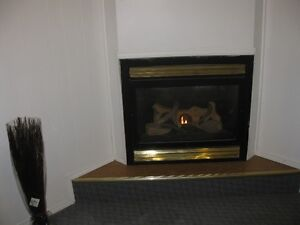 Excellent 1 Bedroom Furnished Suite with Natural Gas Fireplace