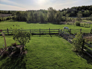 Rose Hill Farm- Boarding Available