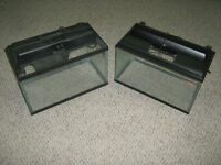 Two 10 gallan aquariums with light canopies