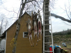 Deer Hunting Camp For Rent
