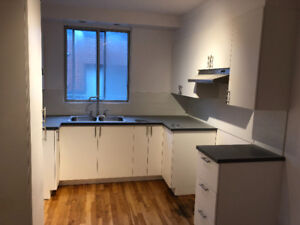5 1/2 of 3 BR fully renovated NDG Cote st Luc Concordia Snowdon