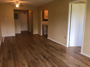 ARNPRIOR – Renovated 1-bedroom apartment