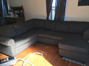 2 year old large sectional couch