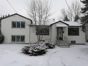 Good Value & Location- 4 BR Main Floor Bungalow- Near 16 Ave