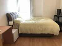 Big Double Bedroom in a two rooms flat Close to Canary Wharf/ LondonCityAirport