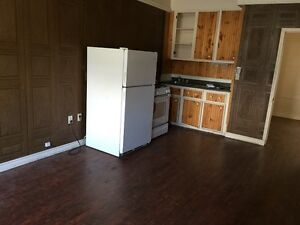 Close to U of A and whyte Ave,one bedroom on the main floor