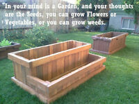 Raised Garden Beds - the Revolution.