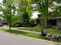 FAST RELIABLE SAME DAY LANDSCAPING SERVICES IN BRAMPTON