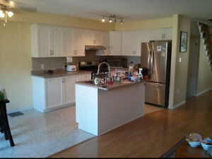 KITCHEN PAINTING &  FURNITURE REFINISHING Peterborough Peterborough Area image 3