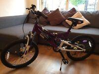 20 inch Dunlop dual suspension bike