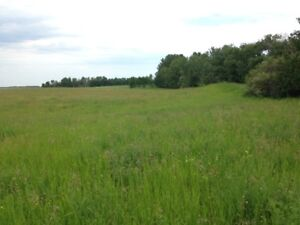 Beautiful 16.9 acres of land directly off pavement