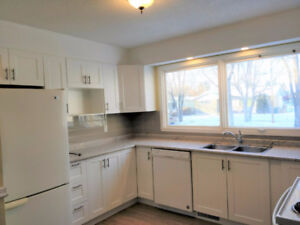 Newly Renovated 2 Bedrm + fully dev bsmt -Morinville - 1 free mo