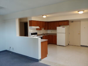 North end St.Catharines freshly painted apt available anytime.