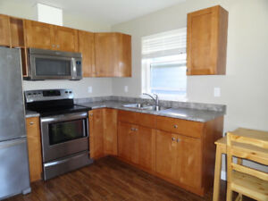 Suite in Langford for rent beautiful nice cozy clean new