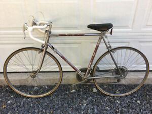 Vintage 10 sp CCM Corsa Bike