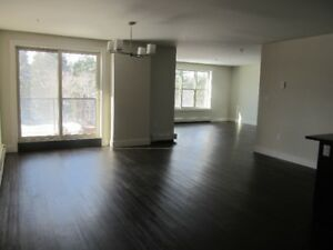 Spacious 3 Bedroom Apartment Top Of Larry Uteck! Power Included!