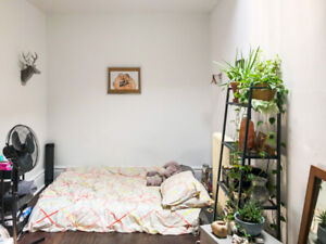 1 spacious BR in a 3BR at Queen West/Parkdale