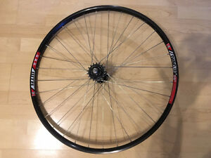 Mountain bike 29 inch single speed fixed wheel