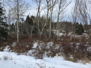 18 Acers for Sale: 46 - 52 Country Path, Holyrood ,NL