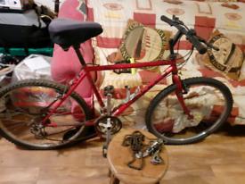 Giant mountain bike good nick