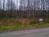 5 acres lot on Concession 14 - REMAX CITYWIDE REALTY INC.