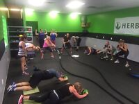 Personal/group training