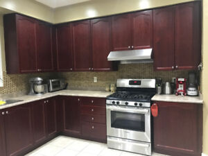 Buy complete contemporary kitchen cabinets with countertop