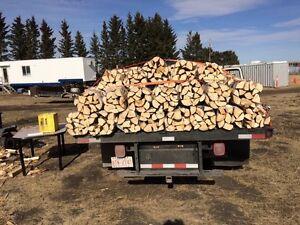 Firewood fire wood bundles.bulk sales pine