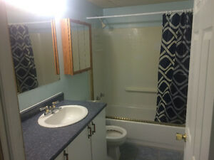 NEW, SPACIOUS CLEAN & AFFORDABLE ROOMS FOR RENT! Gatineau Ottawa / Gatineau Area image 8