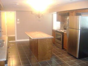LARGE ABOVE GROUND 2 BEDROOM APT NEAR ALL AMENITIES