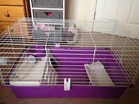 Guinea pig/rat cage