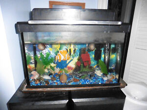 5.7 gallon Fish tank with filter, heater, beta fish, snails, etc